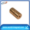China 100 mmm Sintered Ndfeb Magnet Cylinder